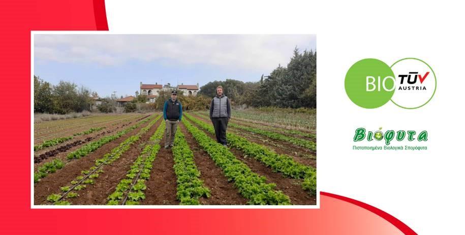 ΒΙΟΦΥΤΑ: η TÜV AUSTRIA Hellas πιστοποιεί το βιολογικό φυτώριο κηπευτικών και αρωματικών φυτών