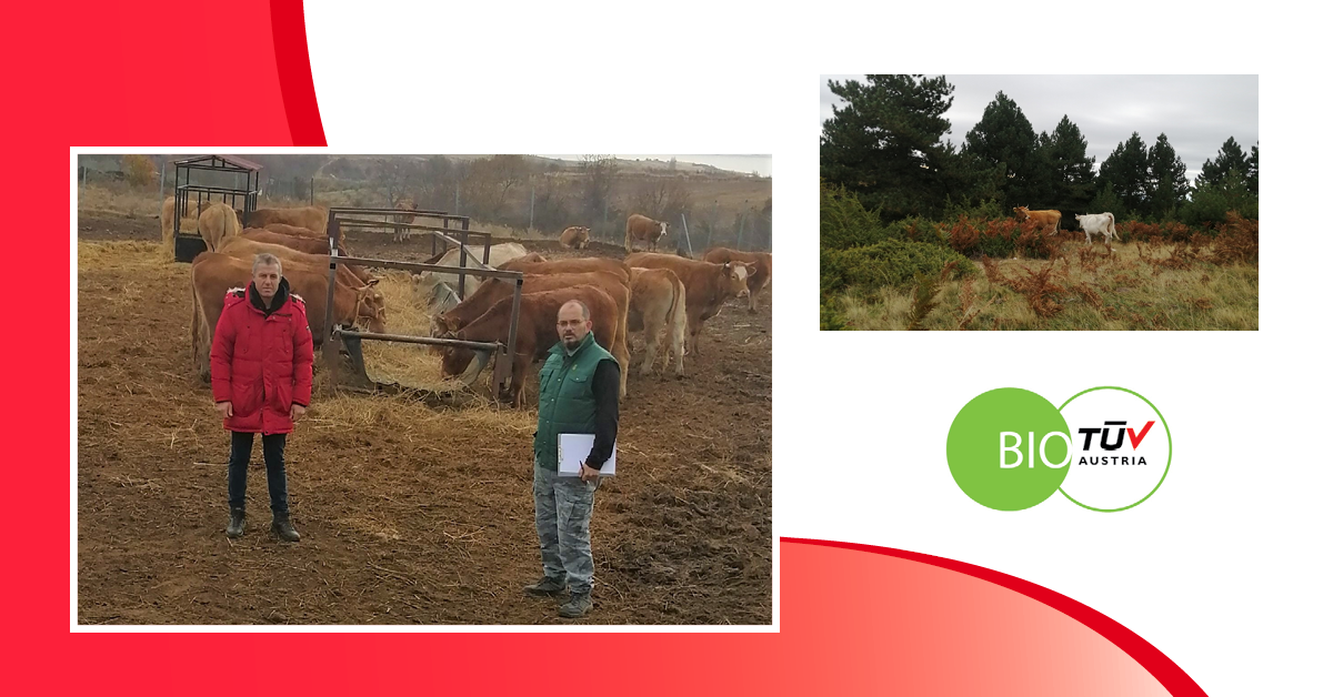 H κτηνοτροφική μονάδα της Σπανού Αθηνάς & του Ζαρογιάννη Νίκου είναι πιστοποιημένη από την TÜV AUSTRIA Hellas